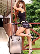 Sexy Legs, Asian Women tatiana tein 02 stewardess