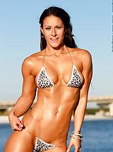 Bikini, Sammie Rose, Dreamy Hot Body
